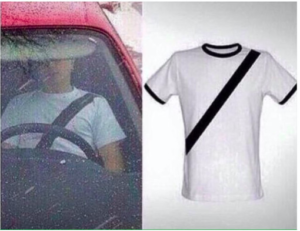 Fake Seatbelt
